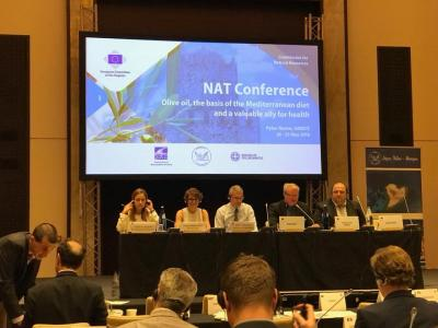 NECSTouR Presents the Needs and the Potential of European Regions in the Field of Coastal and Maritime Tourism at the NAT Commission Meeting